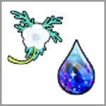 運次第の「人魚の涙」キラキラマラソンコースと、おすすめ「天竜草」キラキラマラソンコース